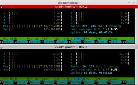 ck :: Monitoring memory usage of a LXC container (comparing