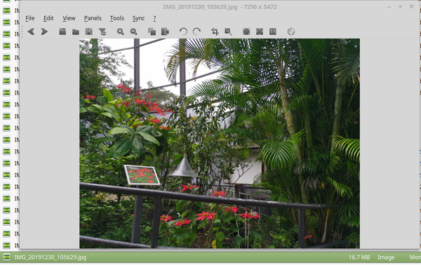 Linux Mint 18.3 viewing image / photo with Nomacs